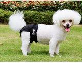 Loopsheidbroekje zwart Dogs&Co