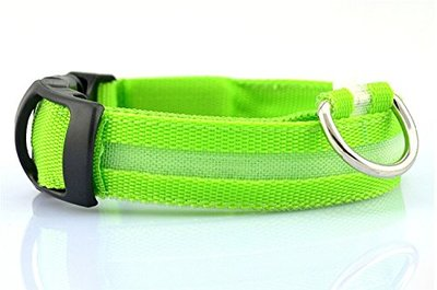 Led Halsband Groen