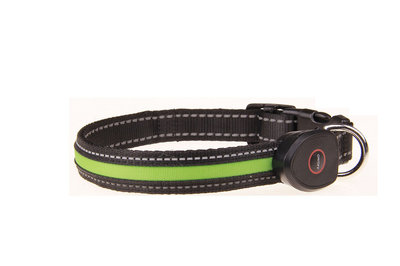 Honden Led Halsband Groen USB oplaadbaar