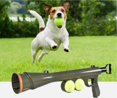 Dogs&Co Ballenschieter inclusief 2 ballen