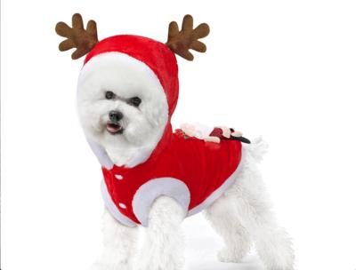 Kerst Outfit voor kleine hondjes - Kerstkleding Hond